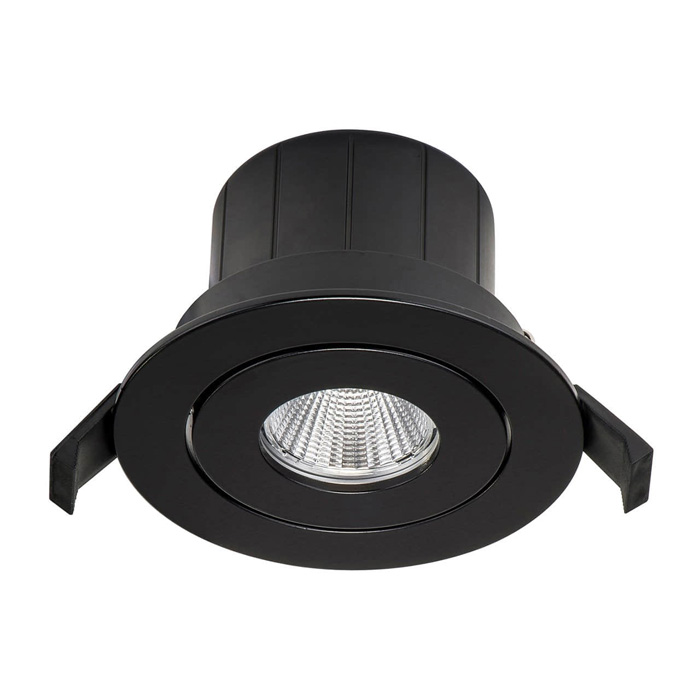 Module Downlight DL25D adjustable