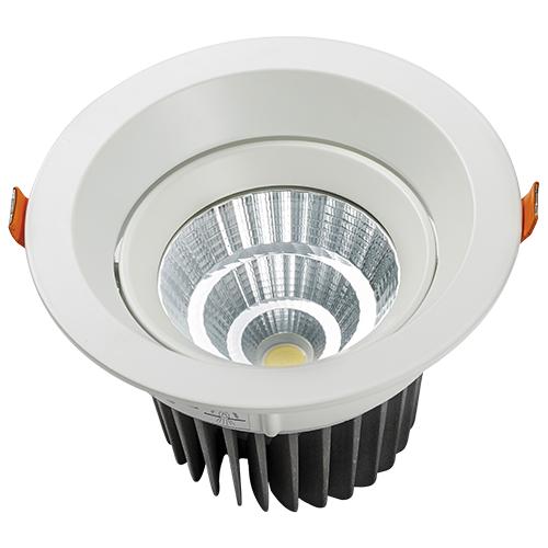 DL103-5 30W Adjustable LED Downlights