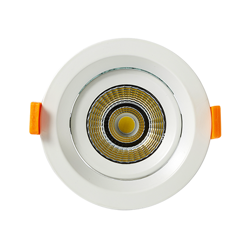 DL103-2 10W Adjustable LED Downlights