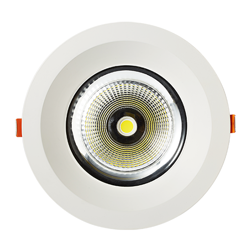 DL102-5 20W COB Fixed LED Downlights