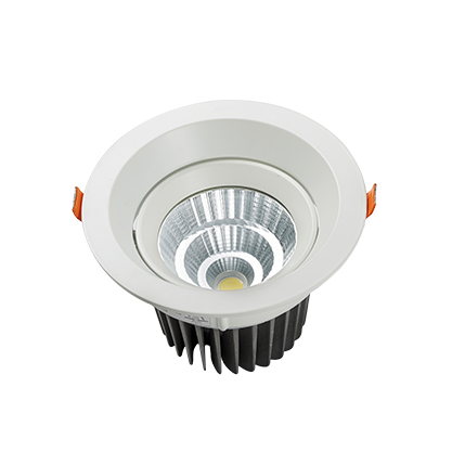 DL103-4 20W Adjustable LED Downlights
