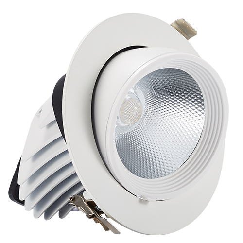 20w adjustable Angle Nick lamp downlight can be embedded