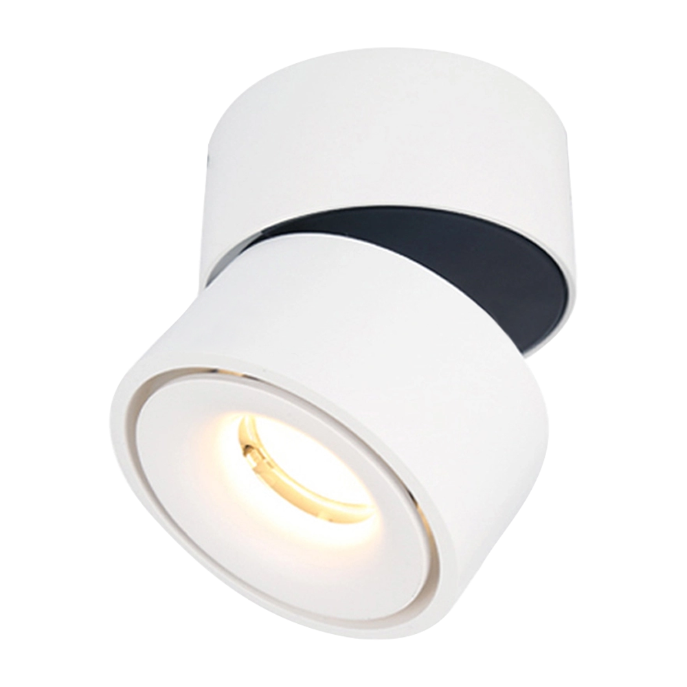 DL129-15Indoor 15W LED Spotlight 360°Adjustable Ceiling Downlight